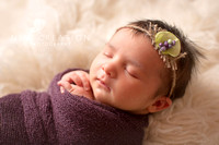Hansen-Iowa-City-Newborn-Photography-8638